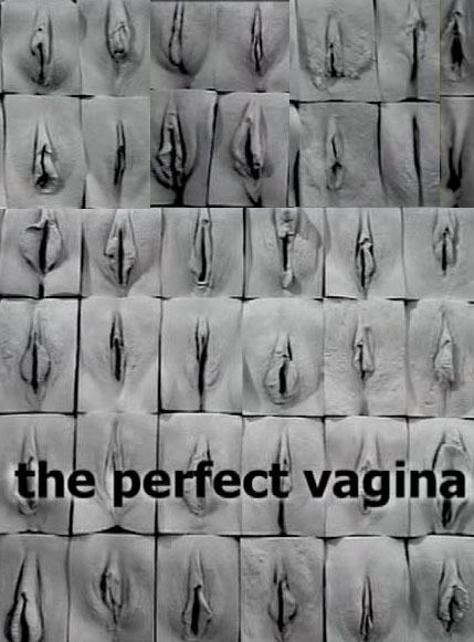 """The Perfect Vagina Full Documentary Women are undergoing surgery to create perfect genitalia amid a """"shocking"""" lack of information on the potential risks."""
