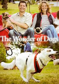 The Wonder of Dogs BBC A team of canine experts reveal the secrets of man's best friend, investigating the differences between different breeds and genetic history of dogs.
